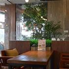 Caffe Bene 海口友谊店