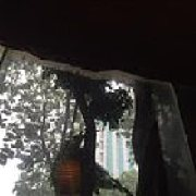 热带雨林餐厅