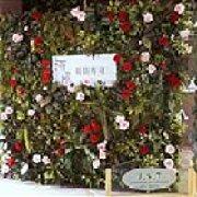 河风精致寿司 城阳店